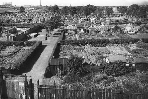 Caledonia Gardens, 1961, just before closure